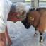 24/9/16 – Addio Giacomina; animali e spiritualità a Torino; il rifugio dei cavalli