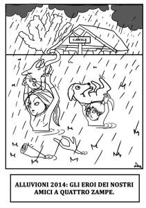 vignetta alluvione dom231114