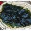 12/12/15 – Vada al mare con alga Nori