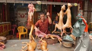Il Festival di Yulin in Cina