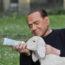 15/4/17 – Berlusconi fa arrabbiare Assocarni; l'etologia filosofica di Marchesini; la fiaba del lupo vegetariano