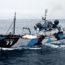"""9/9/17 – Sea Shepherd costretta a ritirarsi; il """"mattatoio dolce""""; il  business degli animali da compagnia"""