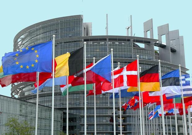 24/9/21 – L'Europa aiuta gli animali; lotte operaie e sguardi antispecisti; l'ipotesi Gaia